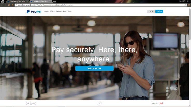 Screenshot of a fake PayPal phishing website