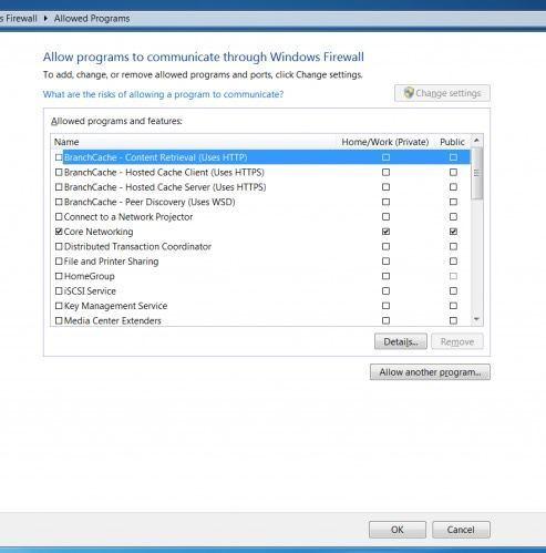 Screenshot - allowing programs through WIndows Firewall