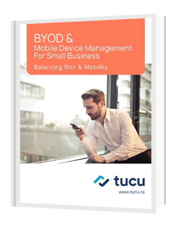 ebook cover byod for small business